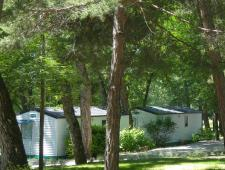 REGION PACA - Camping aux pieds des montagnes (PB 4493)