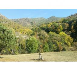 Vend Ardèche verte magnifique structure d'accueil de tourism