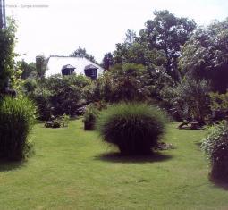 petit paradis en plein nature avec activité de mini-camping, chambre dhôtes et