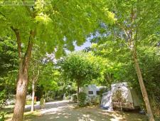 vente d'un joli camping en occitanie
