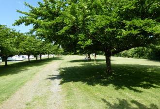KR 4879 Vente beau camping 1.5ha à 5 min des plages