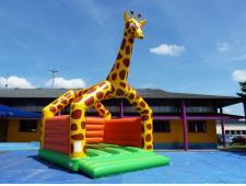 Girafe avec murs