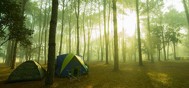 Appels d'offres camping